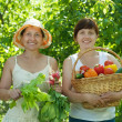 Women with  harvested vegetables in garden - Stock Photo