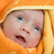 Newborn baby — Stock Photo #6053334