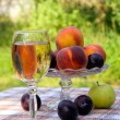 Royalty-Free Stock Photo: Fruites and wine