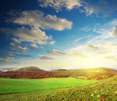 Sunrise in green meadow — Stock Photo