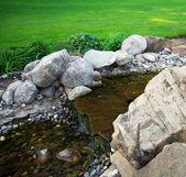 река в парке — Стоковое фото
