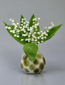 Still-life lily of the valley — Stock Photo