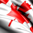 Flag of Canada — Stock Photo #5620635
