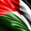 Flag of Palestine — Stock Photo #5620922