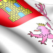 Castile and Leon flag - Stock Photo