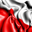 Flag of Poland — Stock Photo #5795657