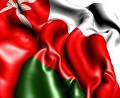 Flag of Oman — Foto Stock