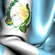 Flag of Guatemala — Stock Photo #5864804