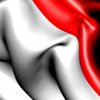 Flag of Indonesia — Stock Photo #5913717