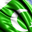 Flag of Pakistan — Stock Photo #6039137