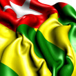 Flag of Togo — Stock Photo #6058561