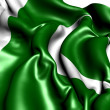 Flag of Pakistan — Stock Photo #6090776