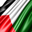 Flag of Palestine — Stock Photo #6090786