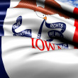 Flag of Iowa - Stok fotoğraf