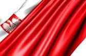 Bandiera della polonia — Foto Stock