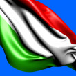 Flag of Hungary — Stock Photo #6305643