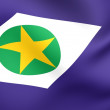 Flag of Mato Grosso do Sul - Stockfoto