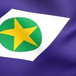 Flag of Mato Grosso do Sul — Stock Photo