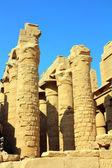 Columnas en egipto templo de karnak — Foto de Stock
