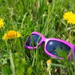Sunglasses in green grass with dandelions — Stock Photo