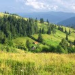 Mountains landscape in Carpathians, Ukraine — Stock Photo