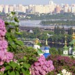 Stock Photo: Kyiv Botanical Garden, Ukraine