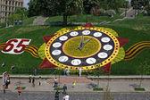 Kwiat zegary — Zdjęcie stockowe