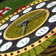 Stock Photo: Flower clocks