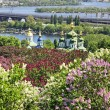 Kyiv Botanical Garden, Ukraine — Stock Photo #6325050