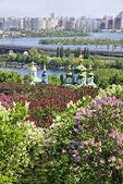 Jardín botánico de kiev, ucrania — Foto de Stock