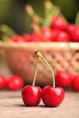 Cherries in basket — Stock Photo