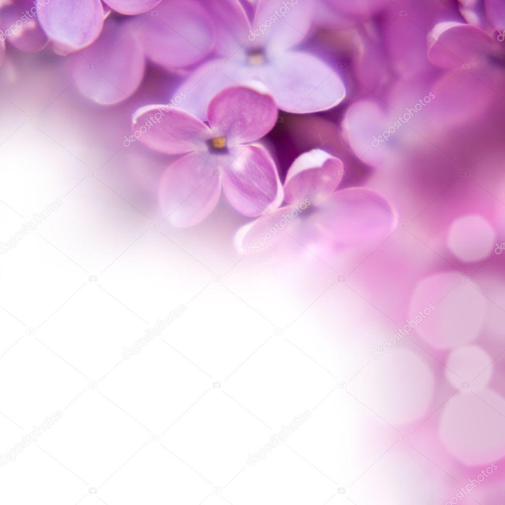 Крупным планом красивые сиреневый фон ...: ru.depositphotos.com/6054841/stock-photo-lilac-background.html