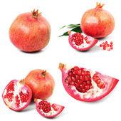 Pomergranate — Stock Photo