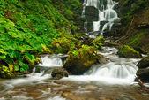 秋の川 — ストック写真