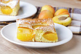 Apricot sponge slice — Stock Photo