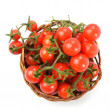 Cherry tomatoes isolated — Stock Photo