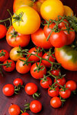 Tomatoes isolated — Stock Photo