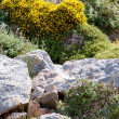 High mountain and Rocks in Greece Rhodes — Stock Photo #6330690