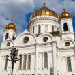 The Cathedral of Christ the Savior, Moscow 2011, Russia — Foto Stock
