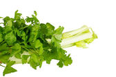 Parsley and celery — Stock Photo