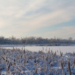 Winter on lake — Stockfoto #6340566