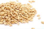 Pile of Pearl Barley — Stock Photo