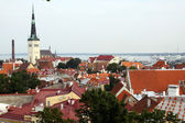 View on old city of Tallinn, Estonia — Stock Photo