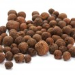 Stock Photo: Black pepper, black peppercorn, indispice