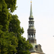 The Cathedral of Saint Mary the Virgin (Toomkirik) in old Tallin — Foto Stock #6613205