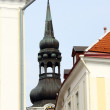 The Cathedral of Saint Mary the Virgin (Toomkirik) in old Tallin — Stockfoto #6613675