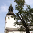 The Cathedral of Saint Mary the Virgin (Toomkirik) in old Tallin — Stockfoto #6613709