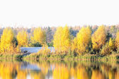 Colorful autumn trees fortress at the river front — Stock Photo