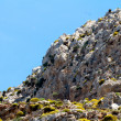High mountain and Rocks in Greece Rhodes — Stock Photo #6622598