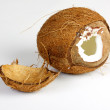 Two halves of coconut on white background — Stock Photo #6624020